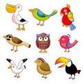 Bird Icon Set