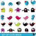 Cute birds icons