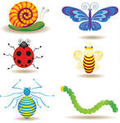 Insect Icon Collection